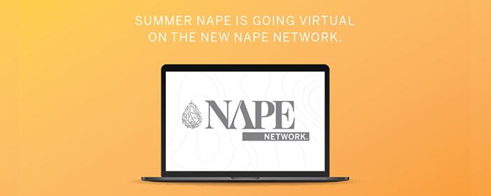 Summer nape virtual 2020 1